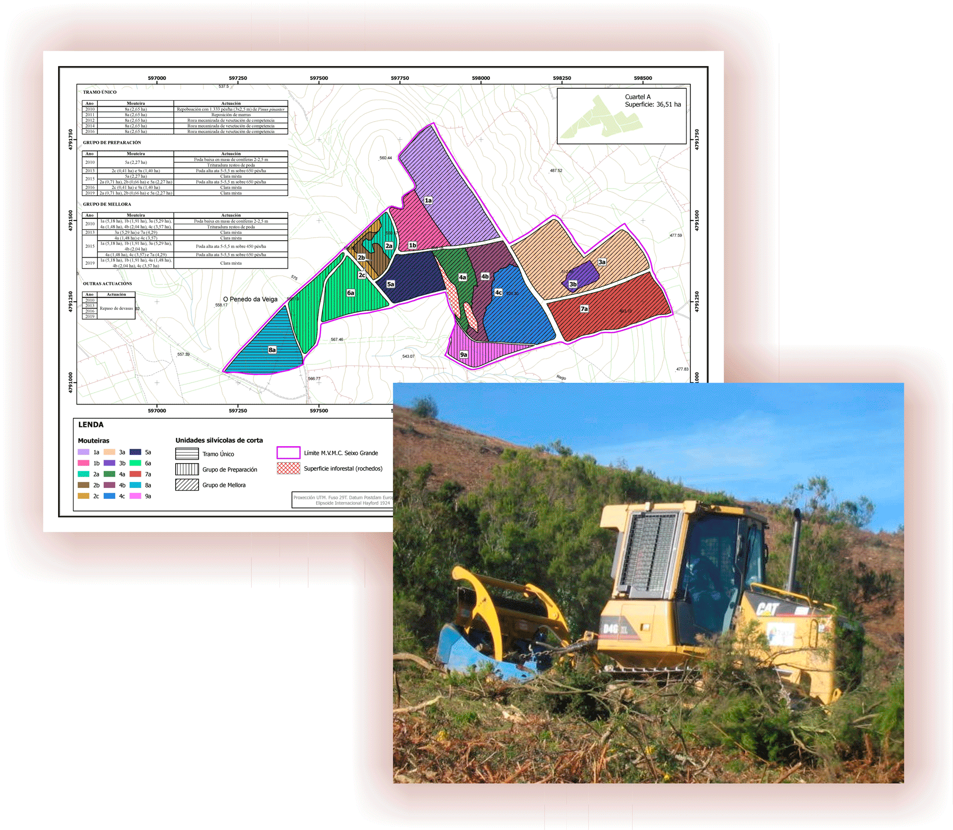 proyectos-GESTION_FORESTAL